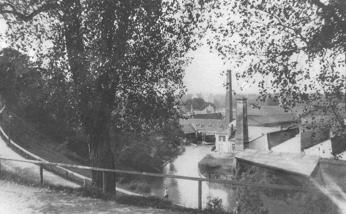 Birkenleiten am Auermühlbach
