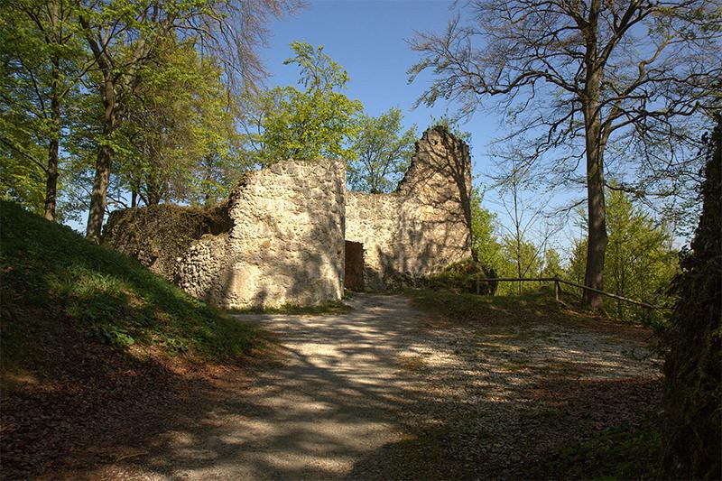 Burgruine Leienfels