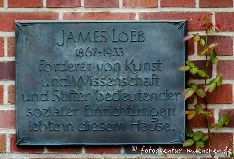 Loeb James