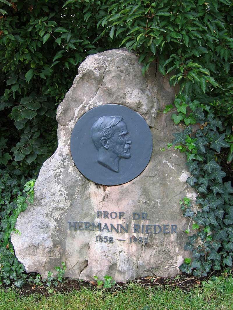 Rieder Hermann