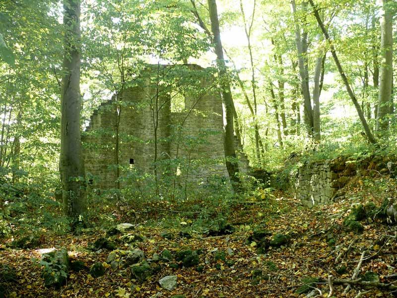 Burg Seldeneck
